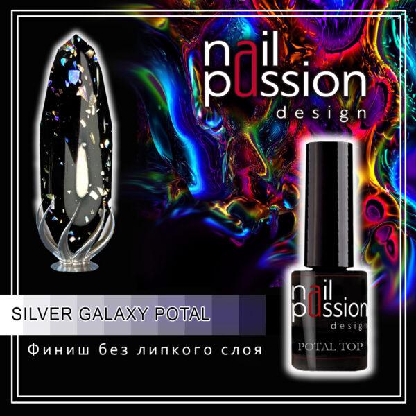 silver galaxy potal